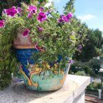 <2019年夏・イタリア旅行記>⑥ ナポリから更に南へ…ジャパァーンから来たよ!